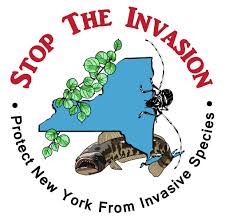 NY-Invasive
