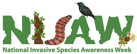 national_invasive_Species_n