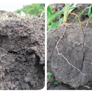 How does tillage impact soil health? photo from Corn and Soybean Digest